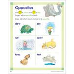 School Zone - combo kindergarten flash action software