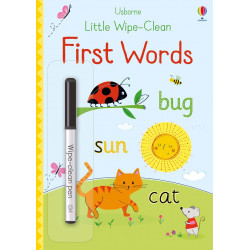Little Wipe-Clean First Words, 20 pages