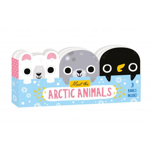 مجموعة كتب صغيرة تعرف طفلك على حيوانات القطب الشمالي من نورث باريد
