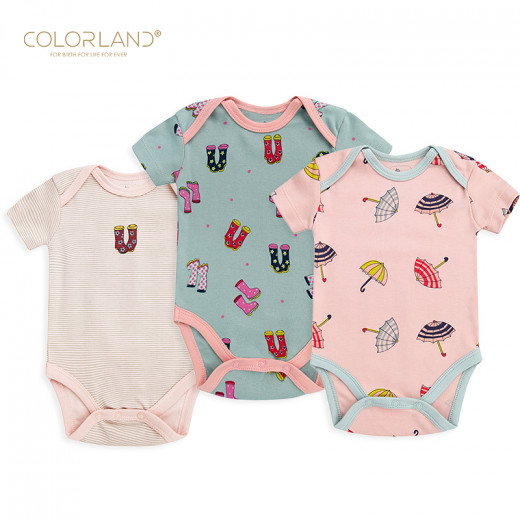 Colorland - (6) Baby Bodysuit 3 Pieces In One Pack, 3-6 Months, Winter